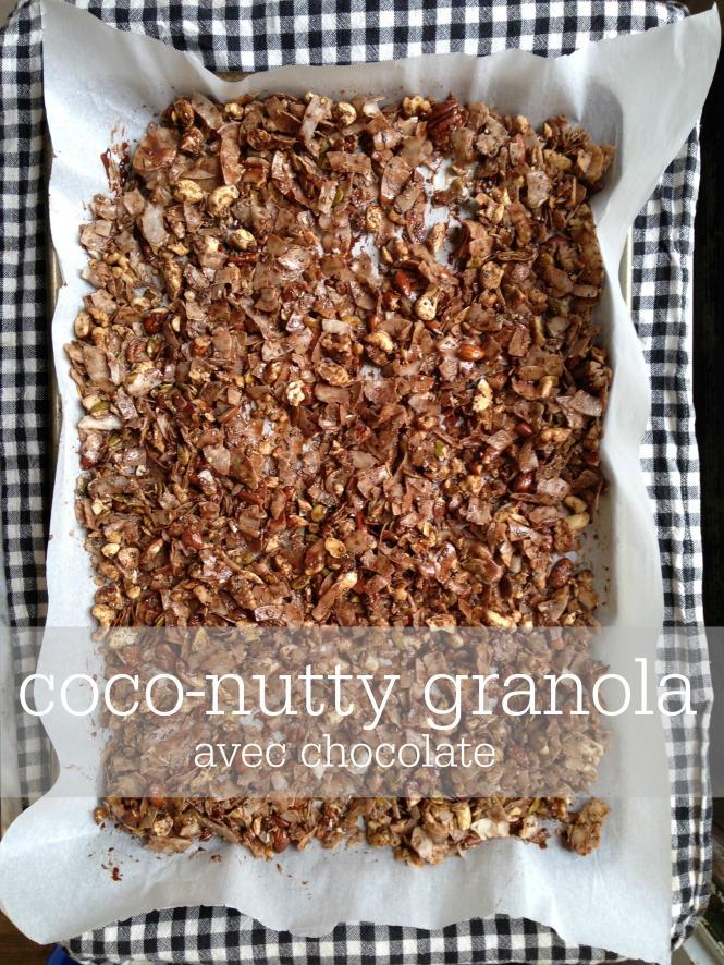 coco-nutty granola